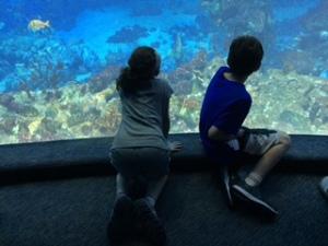 kids facing tank