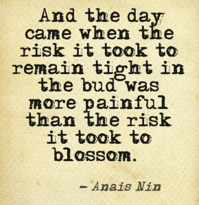 taking risk quote